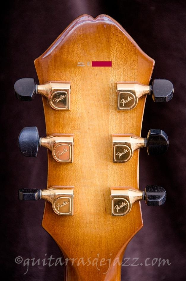 14.- Fender D'Aquisto
