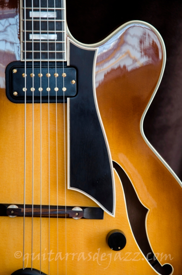 5.- Fender D'Aquisto