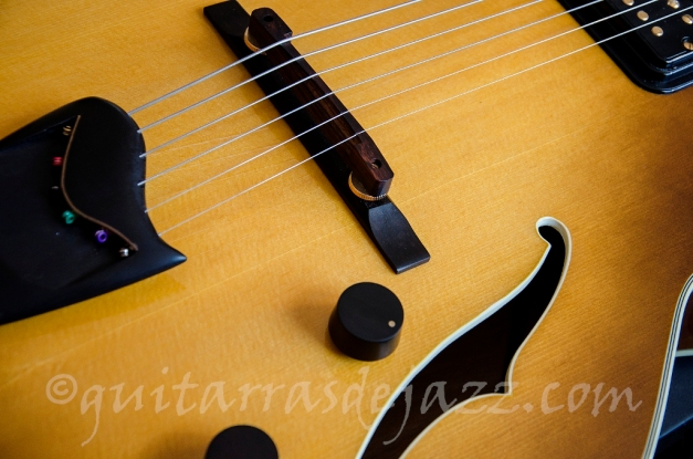 x - Craquelado tapa Fender D'Aquisto 1